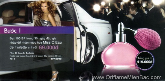 Oriflame - New Recruiter 6-2011 - WP1